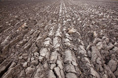 Recently plowed land Stock Image