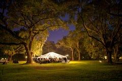Recepción al aire libre en la noche bajo árboles Imagenes de archivo