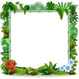 Recepción al diseño de bambú del vector del fondo del marco de la selva libre illustration