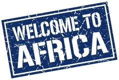Recepción al sello de África Fotos de archivo libres de regalías