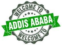 Recepción al sello de Addis Ababa Imágenes de archivo libres de regalías