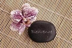 Recepción del significado de Bienvenida de la palabra en francés escrita en una piedra negra con la orquídea Fotos de archivo