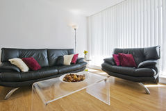 Receptin room. Reception room with two leather sofas Stock Image