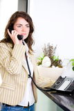 Receptionist calling on phone royalty free stock images