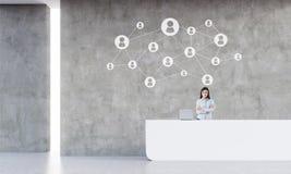 Receptionnist in witte ruimte met startschets op concrete muur Royalty-vrije Stock Foto