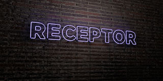 RECEPTOR -Realistic Neon Sign on Brick Wall background - 3D rendered royalty free stock image. Can be used for online banner ads and direct mailers Royalty Free Stock Photo