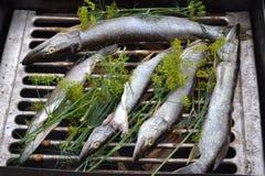 Recetas de la tradición del ahumadero del humo del lucio de los pescados Foto de archivo libre de regalías
