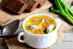 Recette facile et délicieuse de soupe à poissons Soupe saine à poissons avec des pommes de terre, des carottes et des oignons ver Photographie stock libre de droits