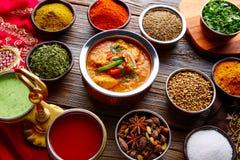 Recette indienne et épices de nourriture de Jalfrazy de poulet Photographie stock libre de droits