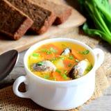 Recette légère de soupe à poissons Soupe délicieuse à poissons avec des pommes de terre, des carottes et des oignons verts dans u Image stock