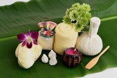 Recettes faciales de masque d'acné avec le fruit et le carbonate de calcium de durian Image libre de droits