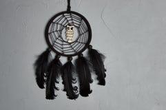 Receveur noir de rêve de hibou Photographie stock