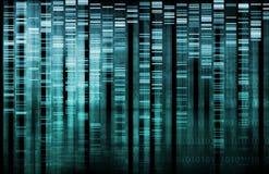 Recherche d'ADN Photo stock