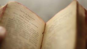 Recherche dans un livre de vintage illustration libre de droits