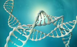 Recherche de g?nome d'ADN Structure de mol?cule d'ADN
