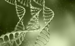 Recherche de g?nome d'ADN Structure de mol?cule d'ADN illustration de la double h?lice 3D