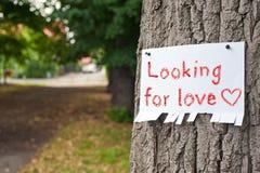Recherche de l'amour Images stock