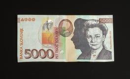 Rechnung mit 5000 Tolar von Slowenien, Brachebild Stockbilder