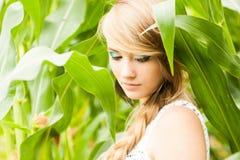Recht blond auf dem Maisgebiet Lizenzfreie Stockbilder