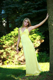 Recht blond im Kleid Stockbild