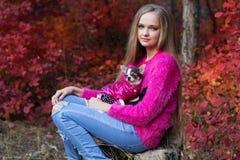 Recht blondes Mädchen mit Chihuahua auf der Natur Stockfotos