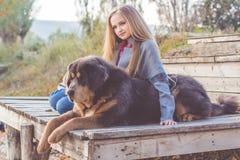 Recht blondes Mädchen mit Mastiff auf der Natur Lizenzfreie Stockfotos