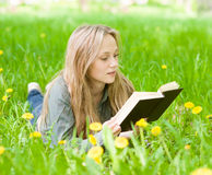 Recht junge Frau, die auf Gras mit Löwenzahn liegt und ein Buch liest Stockfotografie