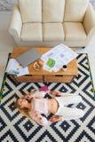Recht junges blondes Studieren auf ihrem Laptop beim Lügen in ihrem Wohnzimmer Er liegt auf seinem zurück, ein Freiberufler, Zeic Lizenzfreies Stockfoto