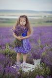 Recht junges Mädchen, das auf dem Lavendelgebiet in der netten Hutkreissäge mit purpurroter Blume auf ihr sitzt Lizenzfreie Stockbilder