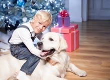 Recht kleines Kind spielt mit Haustier im neuen Jahr Lizenzfreies Stockfoto