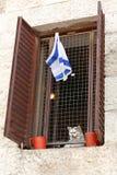 Recht, nach Israel zurückzugehen Stockbilder