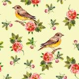 Recht nahtloser gelber Hintergrund mit rosafarbenen Blumen und Vögeln Vektor Abbildung