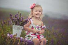 Recht nettes kleines Mädchen trägt weißes Kleid auf einem Lavendelgebiet, das einen Korb voll von den purpurroten Blumen hält Stockbilder
