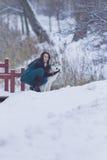 Recht ruhiger kaukasischer Brunette mit ihrem Husky Dog während eines Spaziergangs im Winter Stockfotografie
