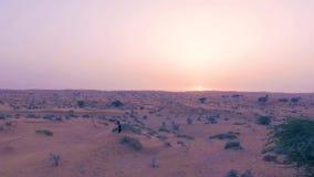 Recht sexy Mädchen tanzt in Wüste mit Sonne auf Hintergrund Glückliche Schönheit tanzt Osttanz auf Sand bei Sonnenuntergang stock video