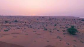 Recht sexy Mädchen tanzt in Wüste mit Sonne auf Hintergrund Glückliche Schönheit tanzt Osttanz auf Sand bei Sonnenuntergang stock footage