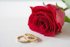 Recht stieg Rot mit zwei Hochzeitsbändern in der Frontseite. Stockfotos