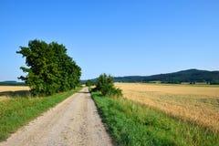 Rechte de dienstweg in het midden van de gebieden stock afbeeldingen