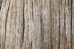 Rechte houten tekens Stock Fotografie