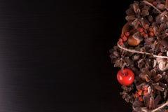 Rechte Seite des Weihnachtshintergrundes horizontal Schwarze Kiefer Lizenzfreie Stockfotografie