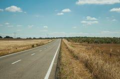 Rechte weg door landelijk landschap dichtbij het Nationale Park van Monfrague royalty-vrije stock afbeelding