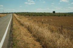 Rechte weg door landelijk landschap dichtbij het Nationale Park van Monfrague royalty-vrije stock fotografie