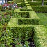 Rechteckige Hecke und Blumen in einem Park stockfotos