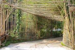 Rechteckiger Bambustunnel Stockfoto