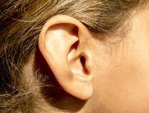 Rechtes Ohr der jungen Mädchen mit dem Haar und dem Babyhaar auf Gesicht stockbilder