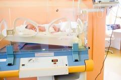 Recién nacido en incubadora Imagen de archivo libre de regalías