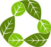 Recicl a folha ilustração royalty free