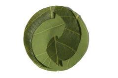 Recicl o símbolo feito das folhas, o ponto verde. Fotografia de Stock Royalty Free