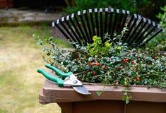 Reciclagem de resíduos II do jardim Foto de Stock