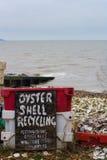 Reciclaje del shell de ostra Fotos de archivo libres de regalías